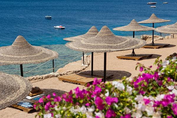 Тур в Египет: Sharm Inn Amarein 4*