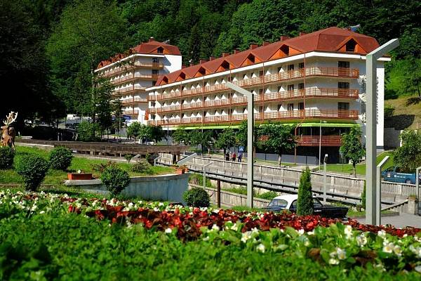 Sairme Hotel and Resort